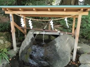 来宮神社お水取り