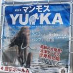 「特別展マンモスYUKA」と「プーシキン美術館展」を鑑賞