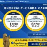 Expedia_AMEX Sky Traveler