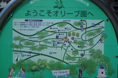 小豆島オリーブ園