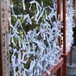 鎌倉鶴岡八幡宮で引いたおみくじが大凶だった件