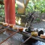 熱海一泊ひとり旅-来宮神社と熱海梅園の梅まつり