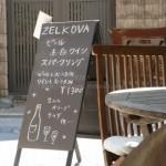 鎌倉でおすすめのモーニング「ZELKOVA(ゼルコバ)」