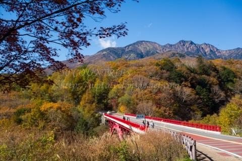 八ヶ岳高原ライン東沢大橋の紅葉