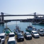 早川駅近くの小田原漁港へ行ってきた