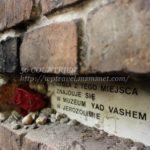 ワルシャワ街歩きPart1-ユダヤ歴史巡り(ゲットー跡とシナゴーグ)