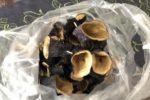 乾燥させた茄子の皮で作るドルマ