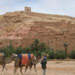 8日間でモロッコの魅力に触れるルート